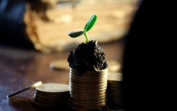 Les dividendes en SASU : Comment ça fonctionne ?