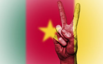 Créer une entreprise au Cameroun : Le guide