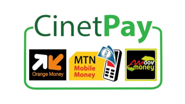 CINETPAY : spécialiste dans le paiement en ligne, le Digital et l'intelligence Artificielle